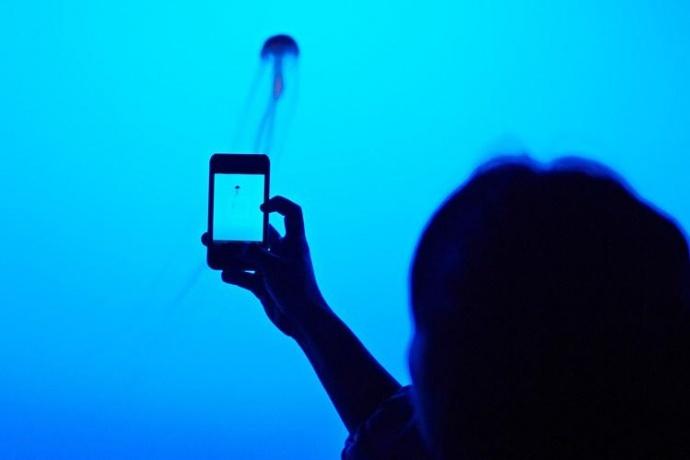 低成本不等于低制作,手把手告诉你如何用手机和单反拍出电影感