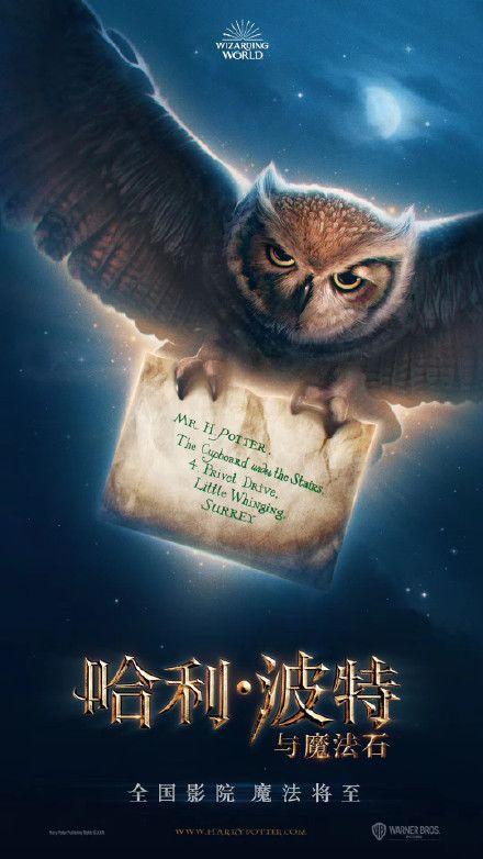 《哈利·波特》重映在即!舊片重映,有哪些法律問題值得關注?